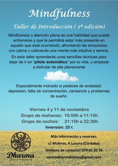 cartel-taller-introduccion